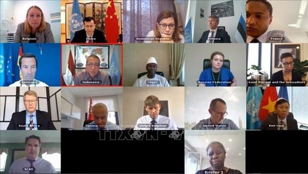 Vietnam/ONU : discussions sur la situation au Liban et au Darfour hinh anh 1