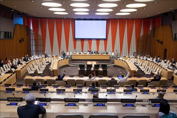 Le Vietnam a une reunion en ligne de l'ONU sur la situation au Yemen hinh anh 1
