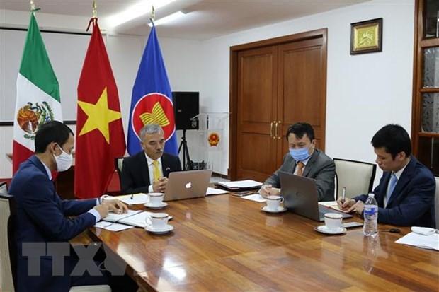 Vietnam et Mexique renforcent la promotion commerciale dans le cadre du CPTPP hinh anh 1