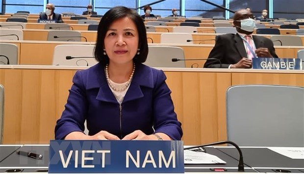 Le Vietnam a l'examen de la politique commerciale de la Thailande a l'OMC hinh anh 1