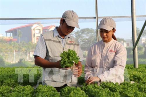 Bac Giang : Appliquer des avancees scientifiques dans le developpement des zones rurales hinh anh 2