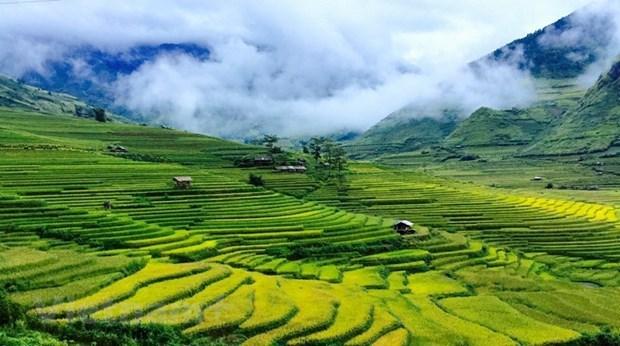 Questions theoriques et pratiques sur le socialisme et la voie vers le socialisme au Vietnam hinh anh 4
