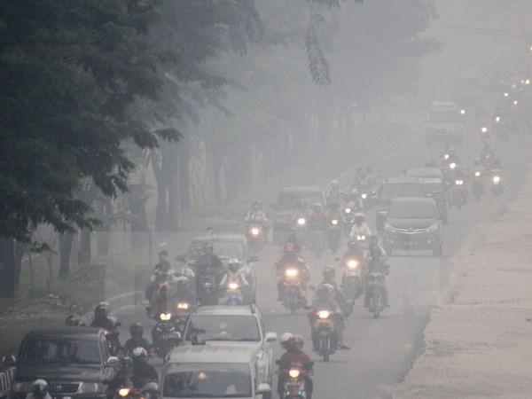 ASEAN: cooperation dans la lutte contre les fumees transfrontalieres hinh anh 1