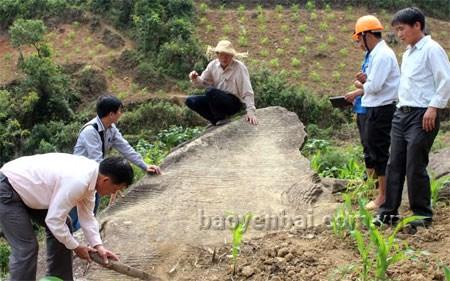 Des oeuvres d'art rupestre decouvertes a Yen Bai hinh anh 1