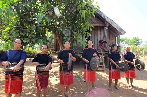 Cours de gong estivaux a Dak Lak hinh anh 2