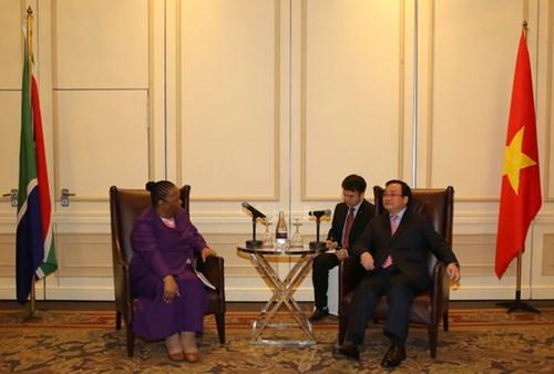 Sciences et technologies : potentiels de cooperation Vietnam-Afrique du Sud hinh anh 1