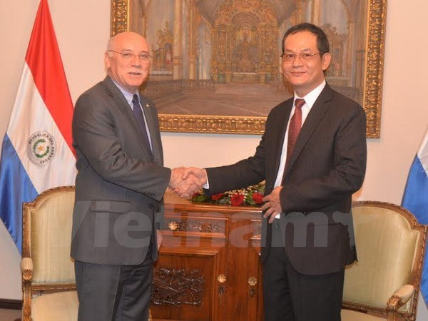 Vietnam et Paraguay commemorent les 20 ans de relations diplomatiques hinh anh 1
