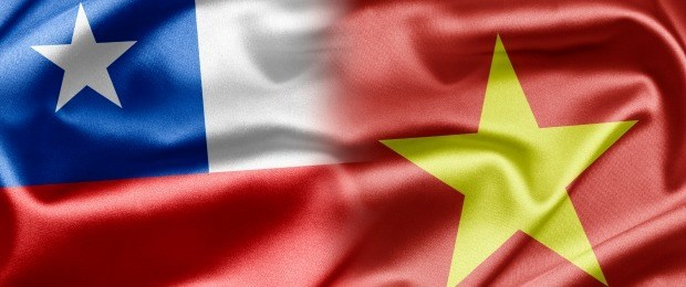 Vietnam et Chili renforcent leurs echanges hinh anh 1