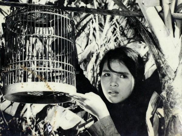 Ouverture d'une Semaine du film vietnamien au Paraguay hinh anh 1
