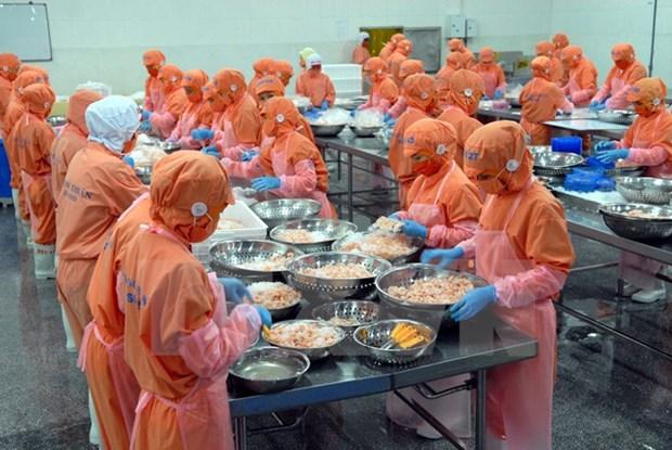 Signe positif pour les exportations de crevettes du Vietnam hinh anh 1