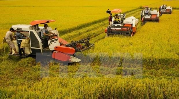 Le Canada souhaite developper le commerce dans le delta du Mekong hinh anh 1
