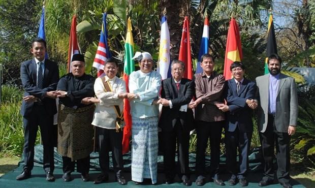 Celebration des 48 ans de la fondation de l'ASEAN en Afrique du Sud hinh anh 1