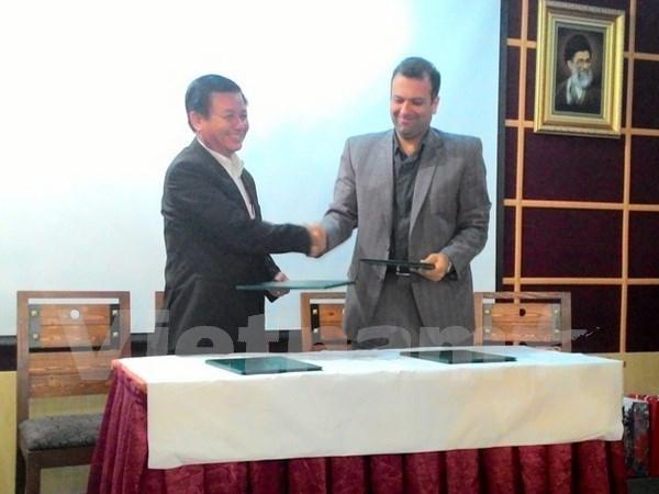Vietnam et Iran renforcent leur cooperation decentralisee hinh anh 1