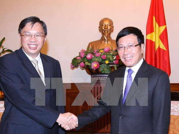Consultation politique Vietnam-Singapour hinh anh 1