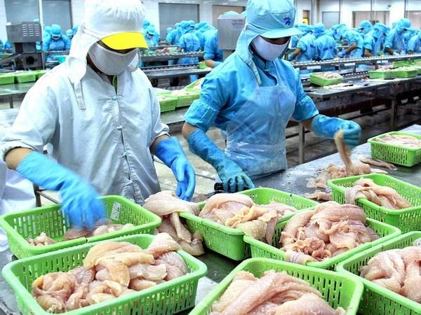 Le poisson tra du Vietnam distribue par Wal-Mart hinh anh 1