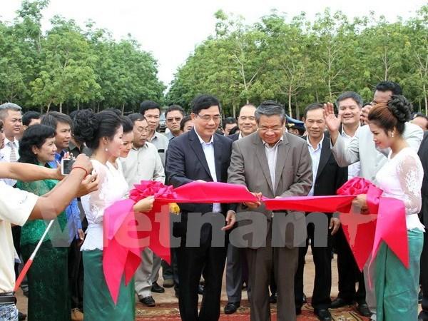 Les entreprises vietnamiennes de caoutchouc fonctionnent bien au Cambodge hinh anh 1