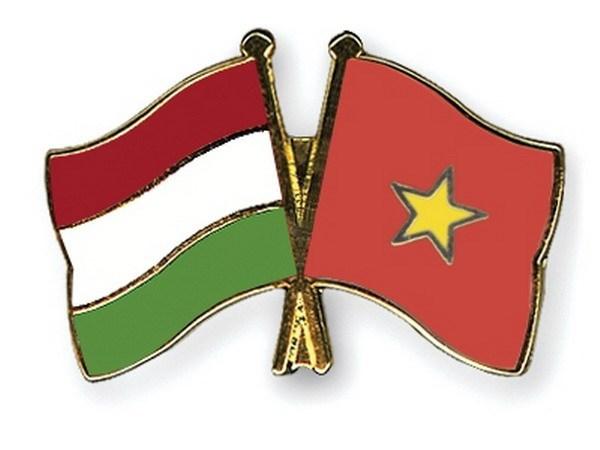 L'Association d'amitie Vietnam-Hongrie a l'honneur hinh anh 1