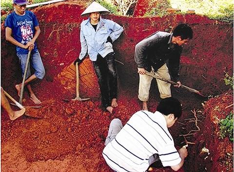 Un tombeau de plus de 1.500 ans a Quang Ninh hinh anh 2