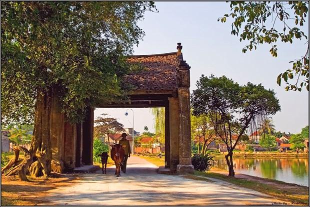 Duong Lam, un village en laterite seculaire hinh anh 1
