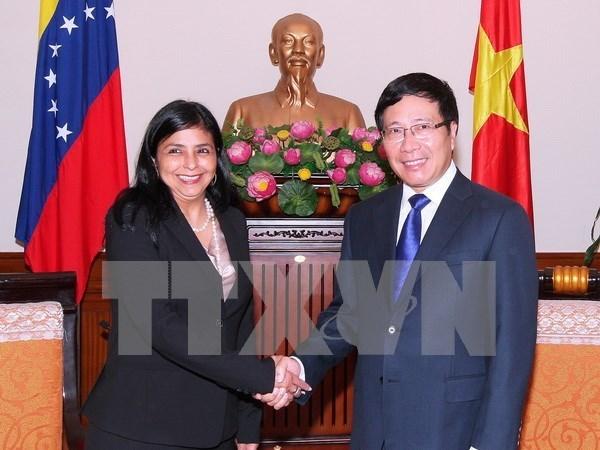 Pham Binh Minh recoit la ministre venezuelienne pour les Relations exterieures hinh anh 1