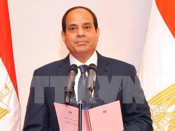L'Egypte promeut une cooperation multiforme avec l'ASEAN hinh anh 1