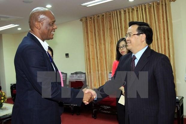 Vietnam-Afrique du Sud : dynamiser les liens entre les deux Partis communistes hinh anh 1