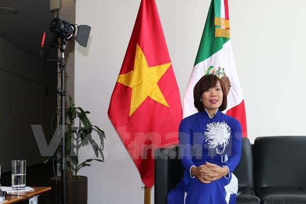 Inauguration de la Semaine du Vietnam au Mexique hinh anh 3