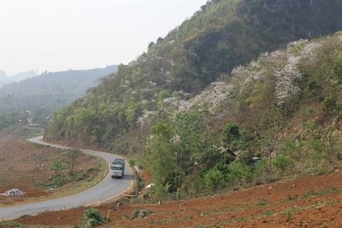 Le tourisme durable doit etre la priorite hinh anh 1