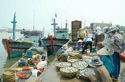Creation de la zone economique du Sud-Est de Quang Tri hinh anh 1