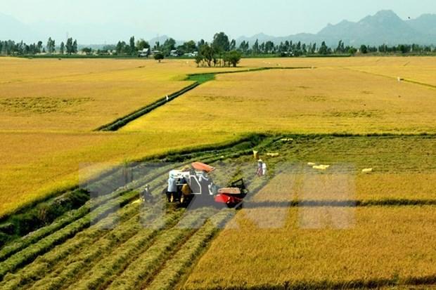 ActionAid Vietnam soutient le developpement de la province de Tra Vinh hinh anh 1