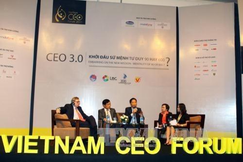 Vietnam CEO Forum 2015 : l'integration a l'AEC en discussion hinh anh 1
