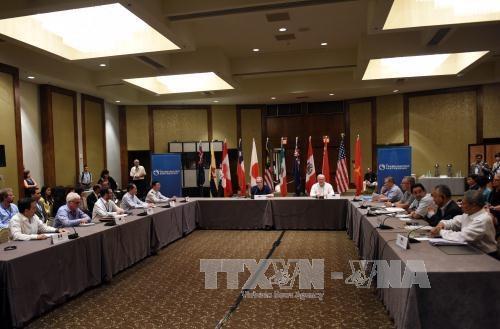 TPP : ouverture d'un nouveau tour de negociations a Atlanta hinh anh 1