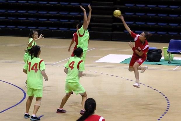 Le Vietnam, champion d'Asie du Sud-Est de handball hinh anh 1