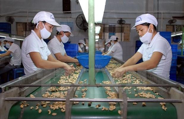 Vietnam et Inde stimulent leur cooperation agricole hinh anh 1