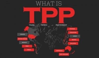 Le TPP, accord tournant du XXIe siecle hinh anh 1