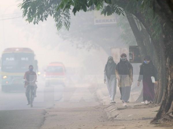 La Malaisie prete a aider l'Indonesie dans la lutte contre les nuages de fumee hinh anh 1