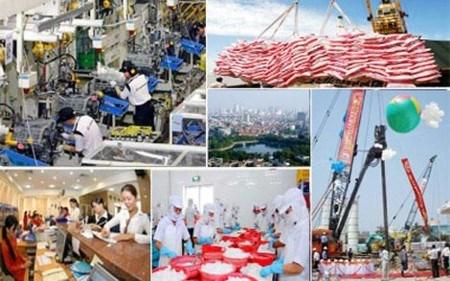 Fitch evalue l'impact du TPP sur l'economie vietnamienne hinh anh 1