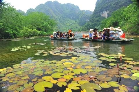 Ninh Binh se demene pour developper le tourisme hinh anh 1