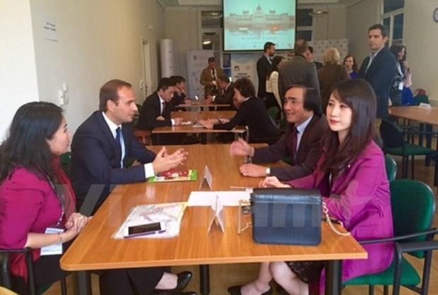 Forum d'affaires Vietnam-Hongrie a Budapest hinh anh 1