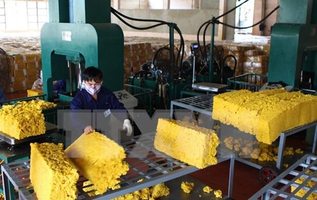 Les exportations de caoutchouc pourraient atteindre 1,6 milliard de dollars hinh anh 1
