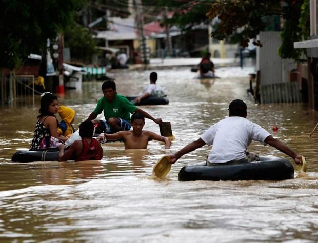 Le typhon Koppu fait une cinquantaine de morts aux Philippines hinh anh 1