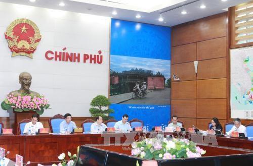 Le Vietnam œuvre pour le succes de l'Annee de l'APEC 2017 hinh anh 1