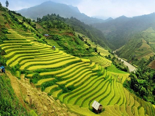 Le Vietnam, l'une des 20 premieres destinations a visiter dans sa vie hinh anh 1