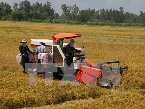 La RPDC recherche des opportunites d'investissement a Hau Giang hinh anh 1