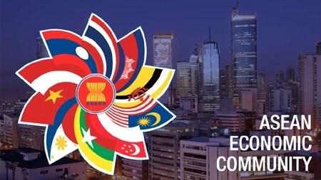 Mesures pour bien realiser les engagements lies a l'edification de la CEA hinh anh 1