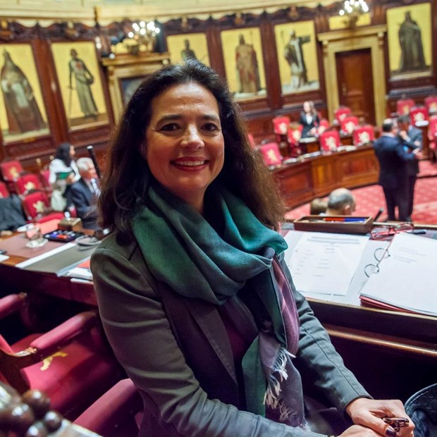 La presidente du Senat belge attendue au Vietnam hinh anh 1