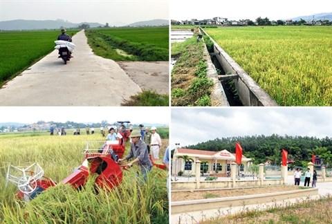 La region rurale de Quang Ninh fait peau neuve hinh anh 1