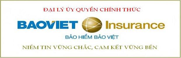 La Societe de gestion du trafic aerien du Vietnam s'assure aupres de Bao Viet hinh anh 1