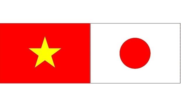 Ho Chi Minh-Ville et Ichinoseki misent sur la cooperation dans l'education hinh anh 1
