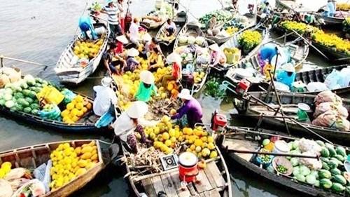 Les valeurs culturelles et touristiques du delta du Mekong a l'honneur hinh anh 1